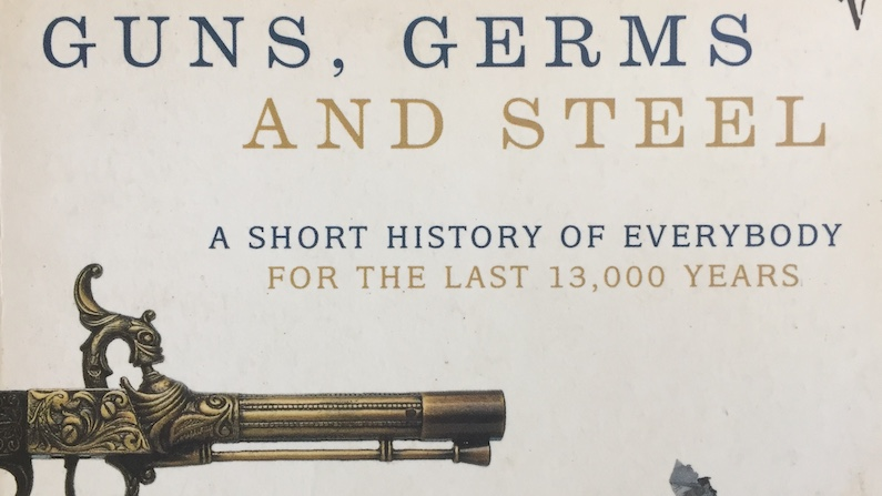 First Sentences - Guns Germs and Steel by Jared Diamond