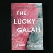 The Lucky Galah by Tracy Sorensen