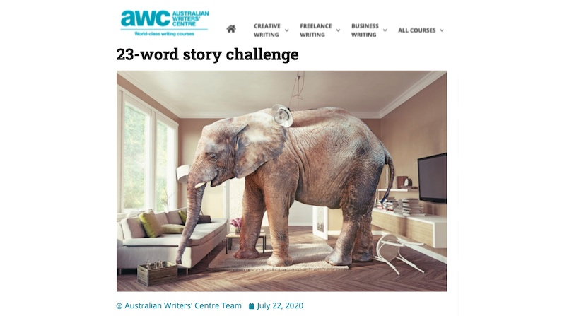 Elephant in the Room & Other 23-Word Stories