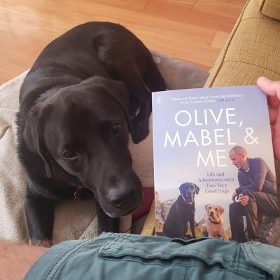 59 Chapter Challenge - Olive, Mabel & Jet