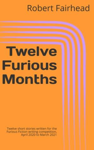 Twelve Furious Months eBook